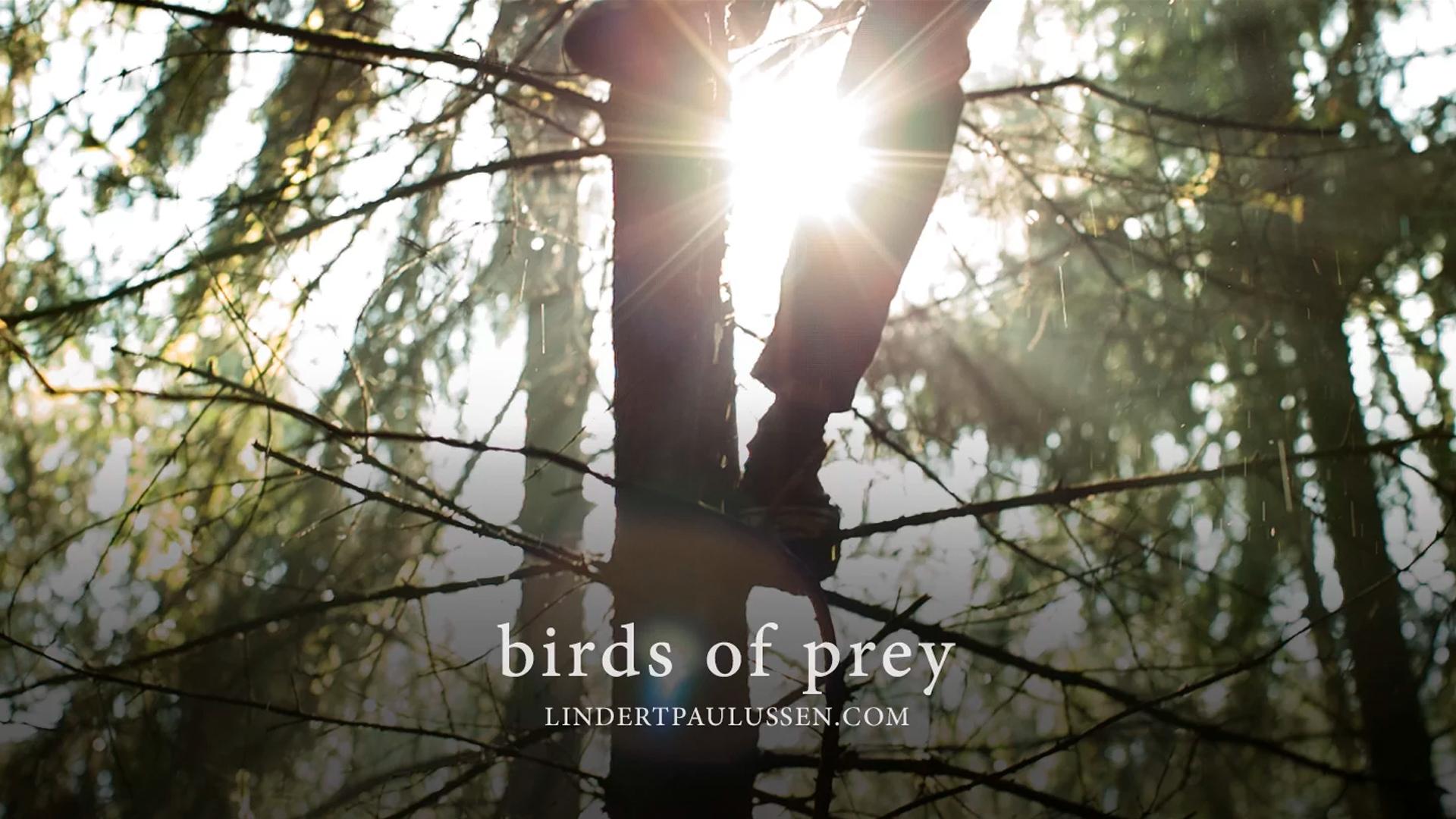 Slide_BirdOfPrey